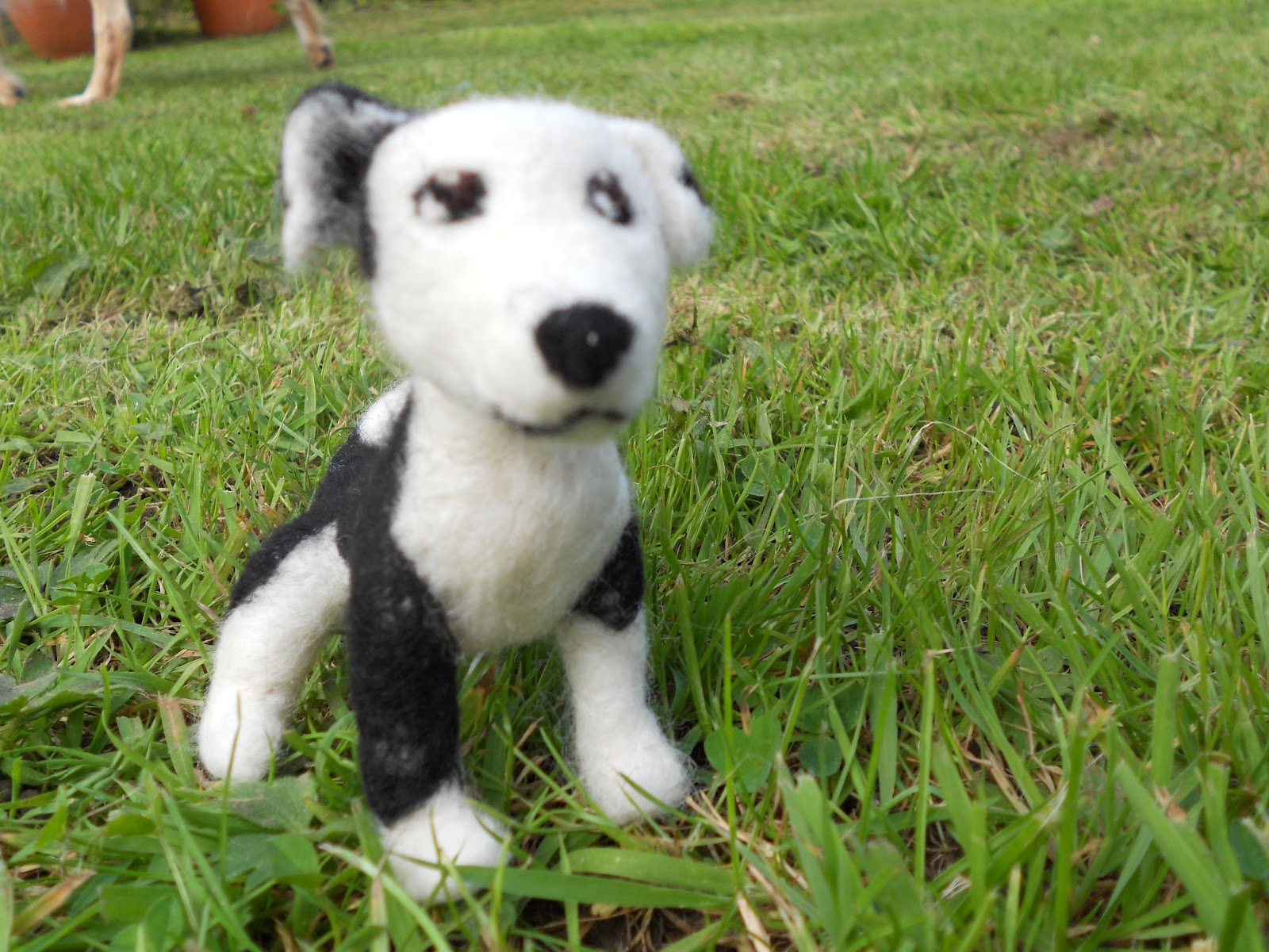 Ben Mcfuzzylugs : A-Z of dog breeds - Border Collie - photo#19