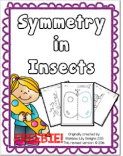 Symmetry in Insects Free Drawing Worksheets