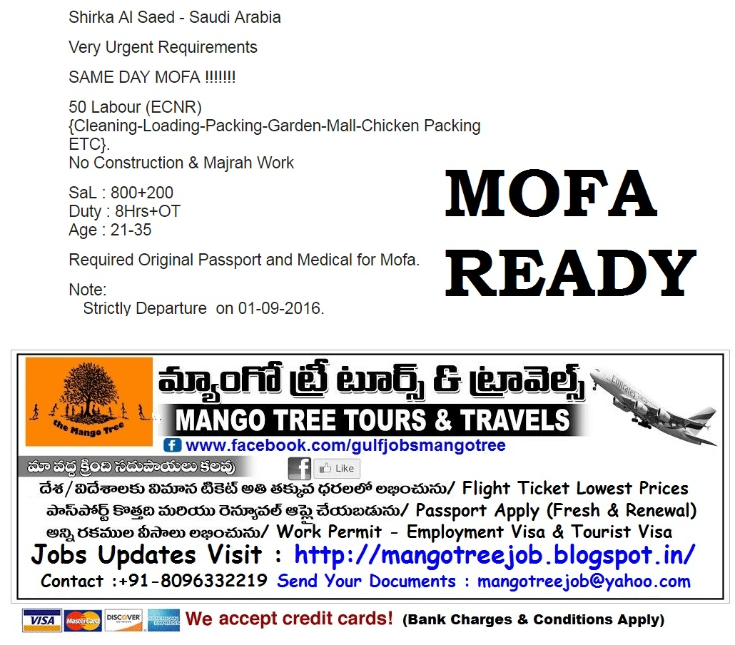 Mango Tree Tours And Travels