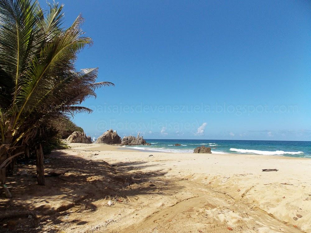 Fotos y Paisajes de Venezuela: Playa Larga