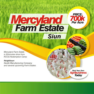 MERCYLAND-FARM-ESTATE-SIUN