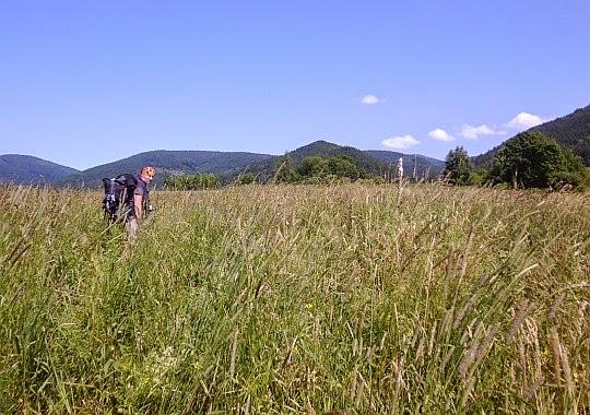 Znów przedzieramy się przez trawy. Szukanie znaków szlaku nie ma tu sensu.