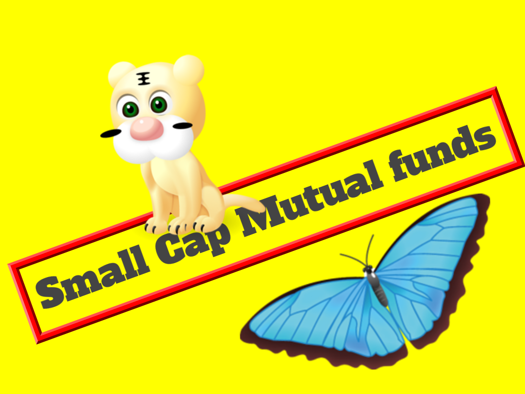 myposts in: Best Small Cap Mutual Funds for 2019