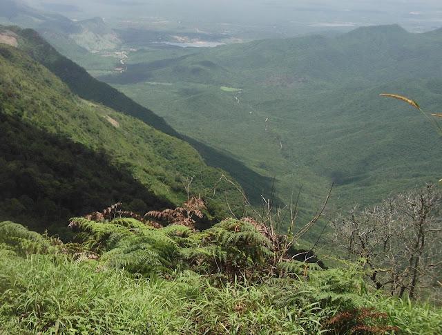 Viagem: Lugares para curtir o frio no Brasil