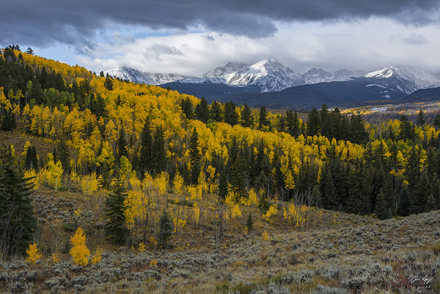Autumn photography of acorn creek with aspens in the fall and gore range
