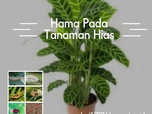 Manfaat Plastik Uv - 12 Jenis Hama Yang Sering Menyerang Flora Hias Serta Cara Pengendaliannya