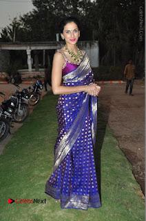Model Shilpa Reddy Stills in Purple Silk Saree at Gudi Sambaralu 2017 Sri Ramachandra Swami Temple  0061.JPG