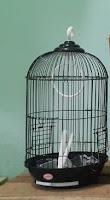 Sangkar Burung Merk Boom