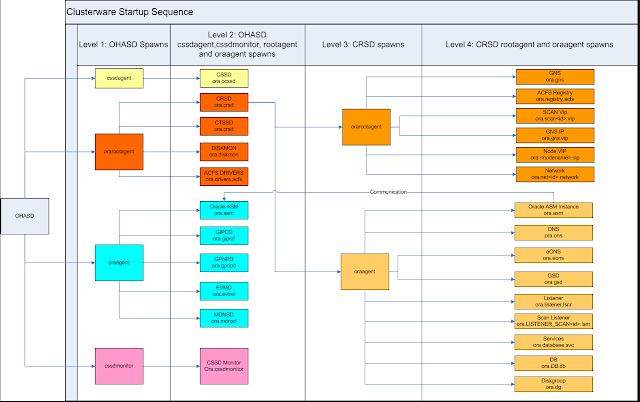Clusterware Process Startup Workflow