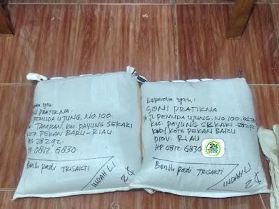 Benih pesanan SONI PRAKTIKNA Pekan Baru, Riau.   (Setelah Packing)