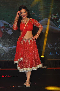 Bollywood Actress Model Sunny Leone Dance Performance in Red Half Saree at Rogue Audio Launch 13 March 2017  0141.jpg