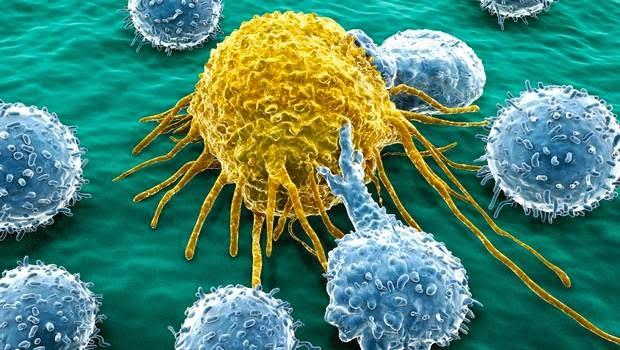 Descubren cómo combatir la resistencia del cáncer a los fármacos