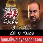 https://www.humaliwalyazadar.com/2018/09/zill-e-raza-nohay-2019.html