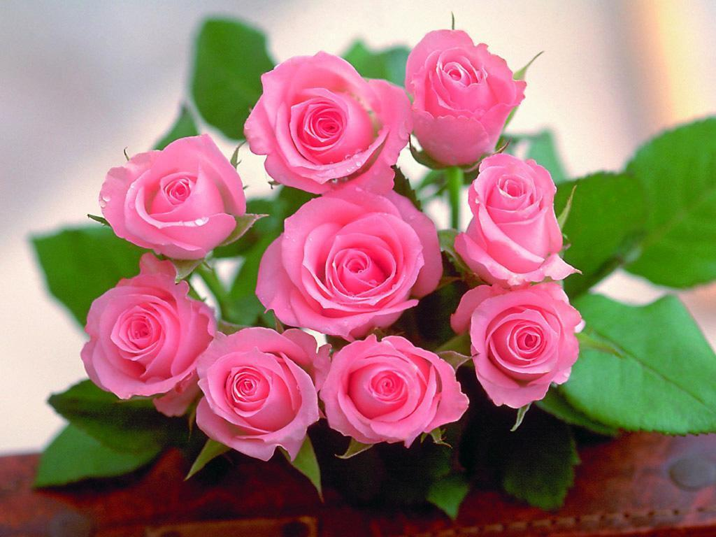 Beautiful Love Rose Flowers Images Bedwalls