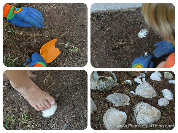 My Garden activity