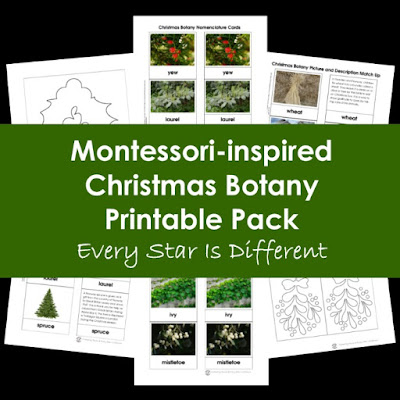 Montessori-inspired Christmas Botany Printable Pack