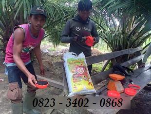 AGEN NASA DI Lubuk Pinang Mukomuko - TELF 082334020868
