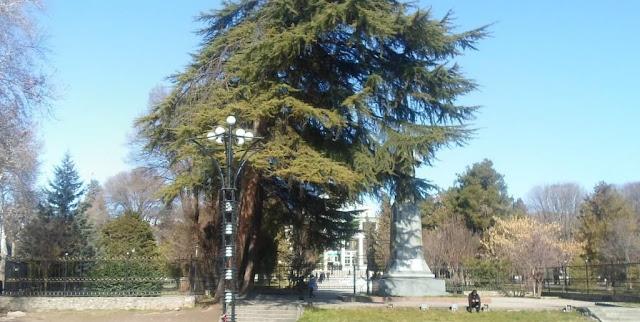 Аграрный университет. Фото города Душанбе 60-ых годов и фото тех же мест в 2015 году.