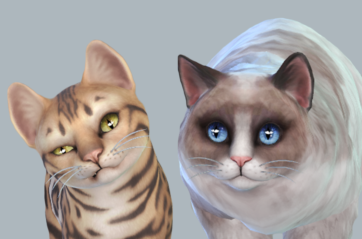 Download Sims  Cats And Dogs