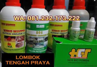 Jual SOC HCS, KINGMASTER, BIOPOWER Siap Kirim Lombok Tengah Praya