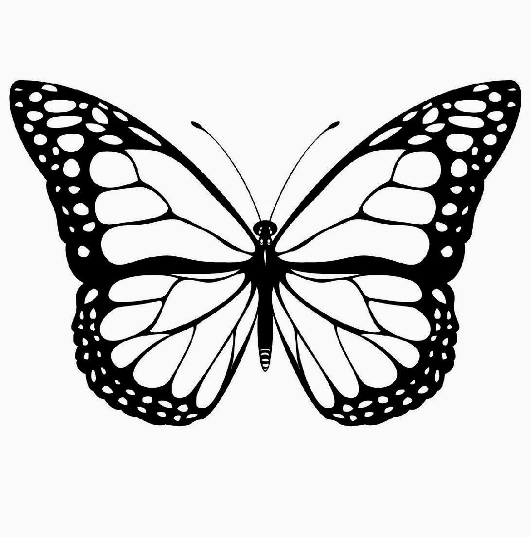 free printable butterfly coloring pages - free printable butterfly coloring pages