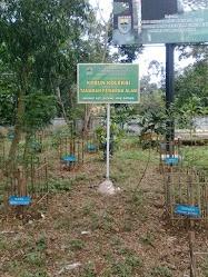 Taman Hiburan Kramat Batang