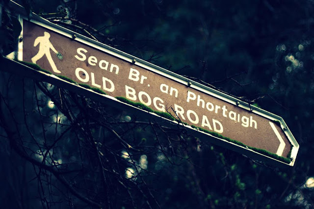 "a road sign saying ""the old bog road"""