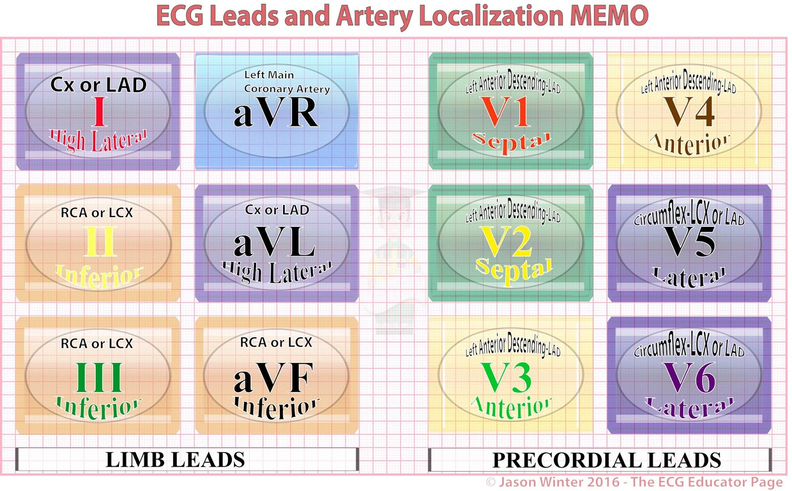 Ecg Educator Blog Introduction To The 12 Lead Ecg