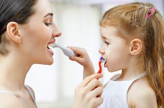 dentista veracruz