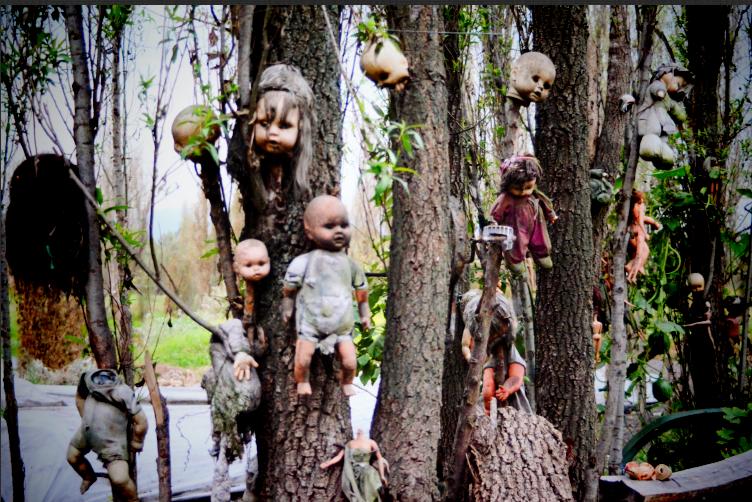 Screen+Shot+2012 11 13+at+11.22.18+PM - 6 Hutan Mengerikan Yang Mempunyai Sebuah Kisah Mistis