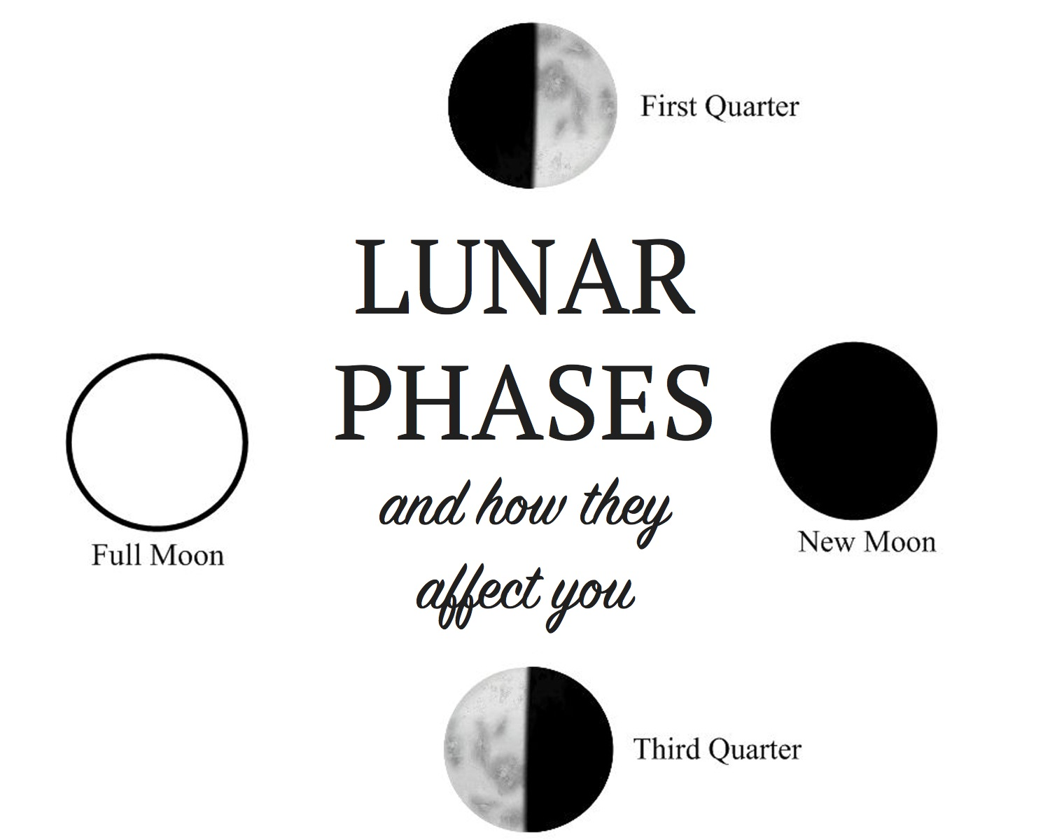 8 Moon Phases Of The Blank Worksheet