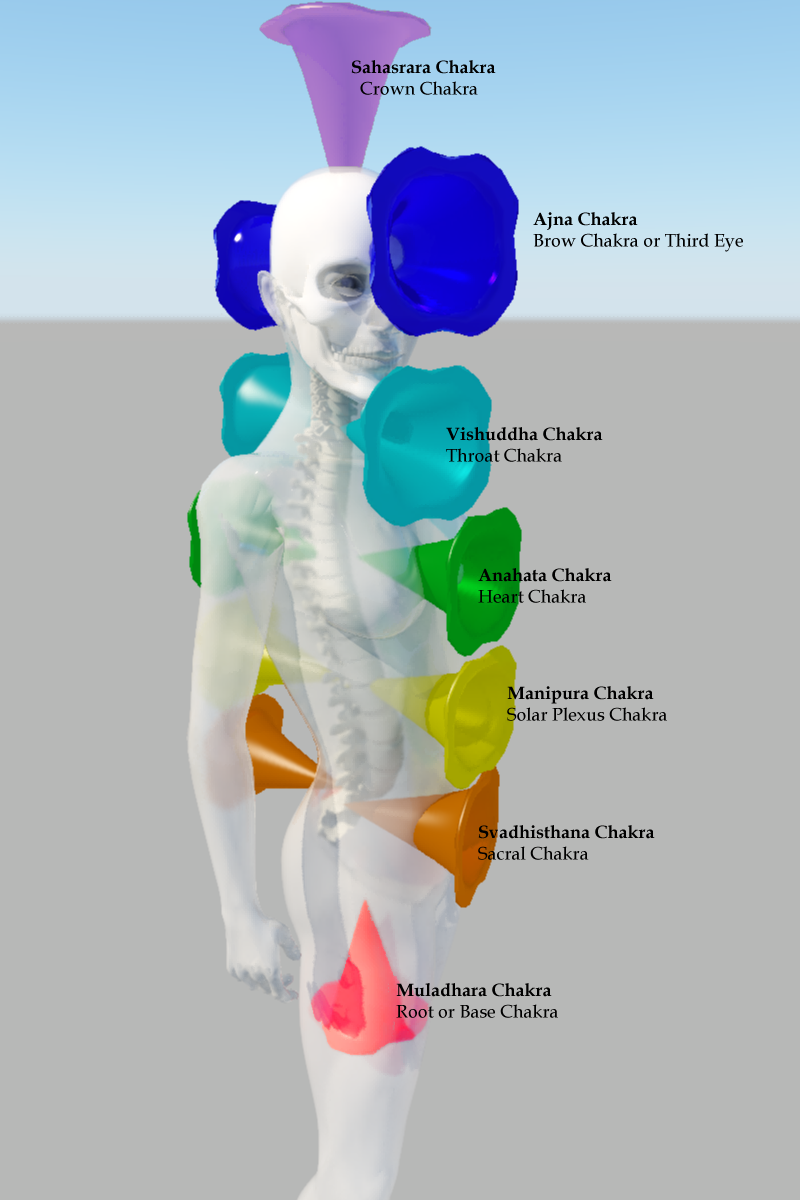 hight resolution of click here to buy chakra diagram