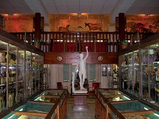 musée Anatomie Lyon - visite guidée de Lyon - Nicolas Bruno Jacquet