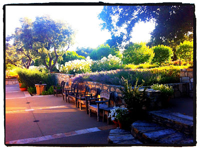 Holman Ranch Rustic Elegance In Carmel Valley Inspirations And Celebrations