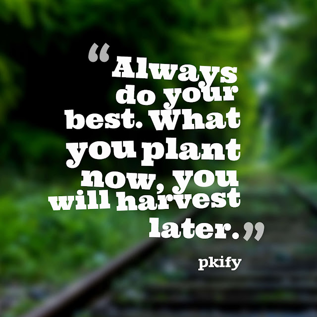 Always Do Your Best What You Plant Now You Will Harvest Later Motivational Quotes