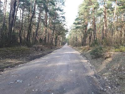 Droga Nowy Wilków - Górki w trakcie remontu