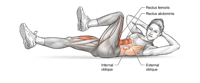 Image result for Bicycle Crunches:
