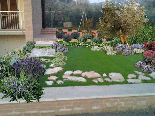 Progetti piccoli giardini e aiuole online for Piante aromatiche perenni