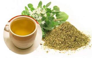¿Sabes para qué sirve el té de orégano?
