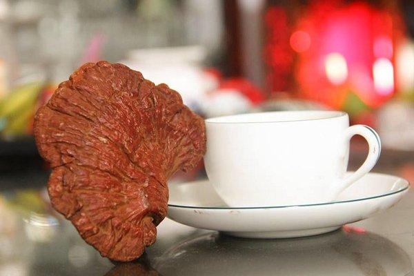 tác dụng của trà nấm linh chi