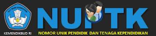 Pusat Informasi Data NUPTK dan GTK, Website Informasi GTK