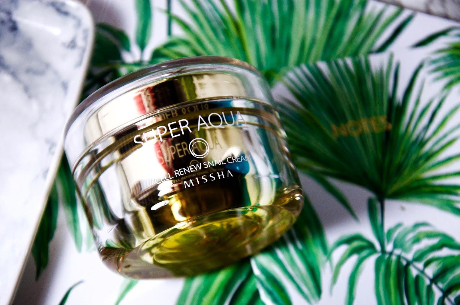 GIMME ALL THE SNAILS: A MISSHA SUPER AQUA CELL RENEW SNAIL CREAM REVIEW