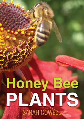 book-cover-honey-bee-plants
