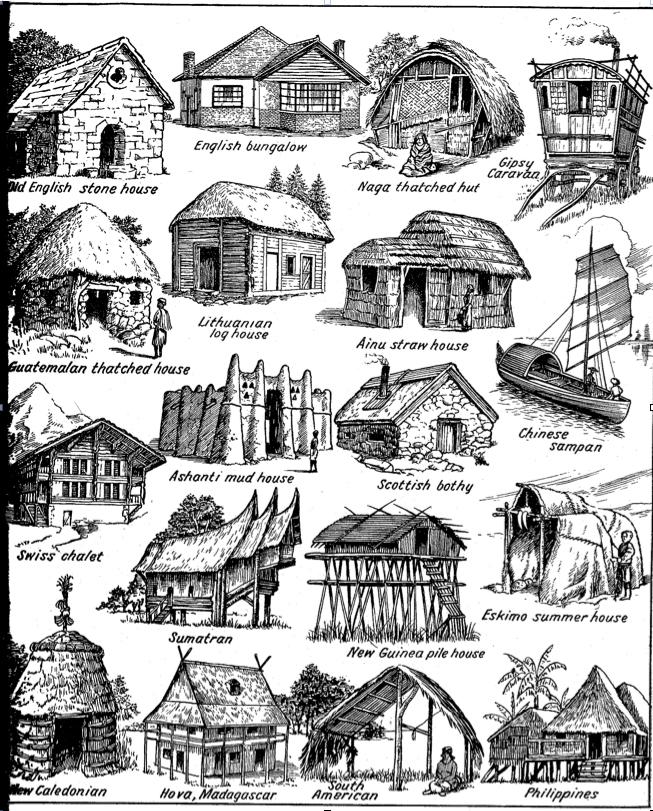 Lloyd's Blog: Drawings Of Vernacular Homes Circa 1900