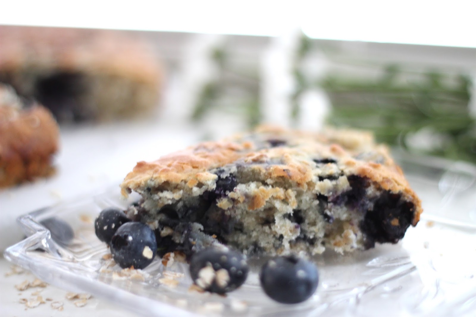 Blueberry Oatmeal Breakfast Cake | Footnotes and Finds