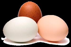 Ovos inteiros (Imagem: Reprodução/Internet)
