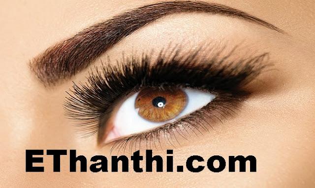 அடர்த்தியான புருவம் தரும் கற்றாழை | Aloe's thick eyebrows !