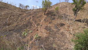 Gunung Wadu Udu Habis Digunduli Warga