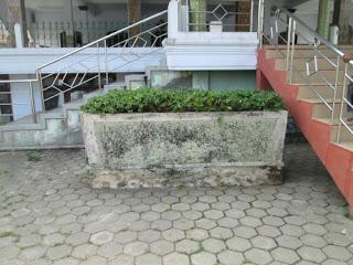 Makam Kyai Adam Muhammad terletak di antara 2 pohon tanjung