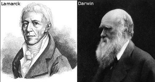 Pencetus Teori Evolusi